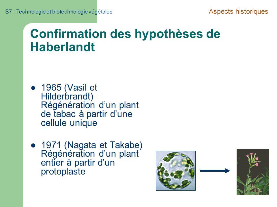 S7 : Technologie et biotechnologie végétales Confirmation des hypothèses de Haberlandt 1965 (Vasil et Hilderbrandt) Régénération dun plant de tabac à