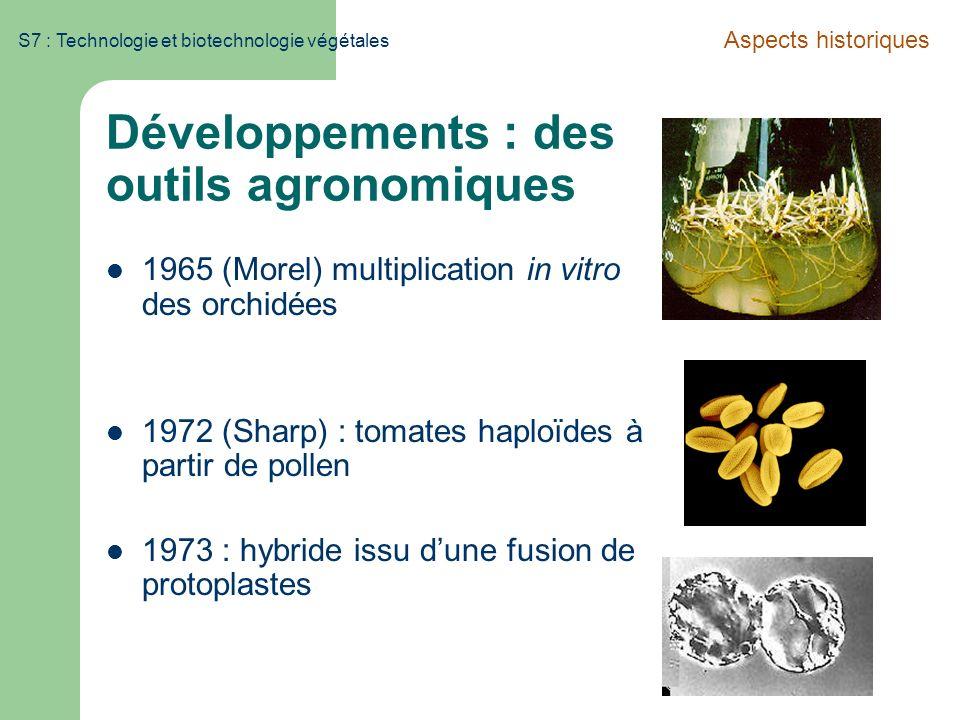 S7 : Technologie et biotechnologie végétales Développements : des outils agronomiques 1965 (Morel) multiplication in vitro des orchidées 1972 (Sharp)