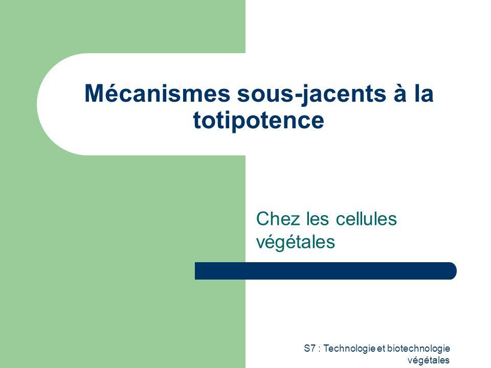 S7 : Technologie et biotechnologie végétales Mécanismes sous-jacents à la totipotence Chez les cellules végétales