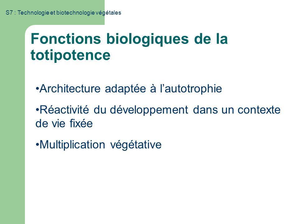 S7 : Technologie et biotechnologie végétales Architecture adaptée à lautotrophie Réactivité du développement dans un contexte de vie fixée Multiplicat