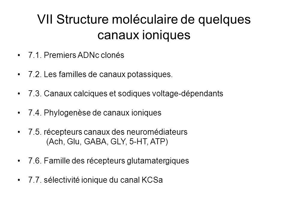 VII Structure moléculaire de quelques canaux ioniques 7.1. Premiers ADNc clonés 7.2. Les familles de canaux potassiques. 7.3. Canaux calciques et sodi