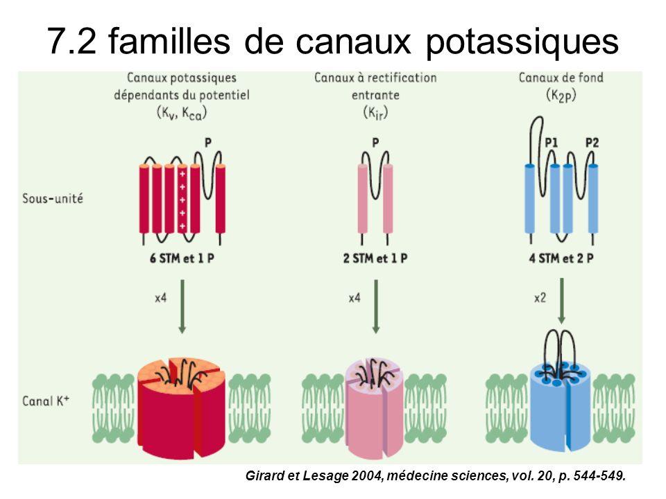 7.2 familles de canaux potassiques Girard et Lesage 2004, médecine sciences, vol. 20, p. 544-549.