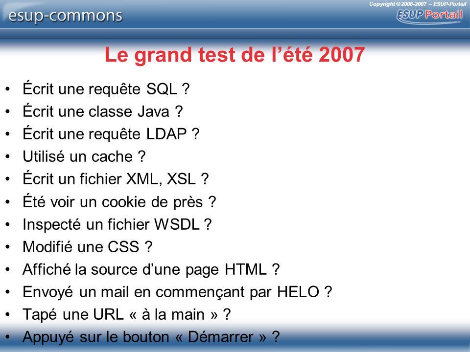 Copyright © 2006-2007 – ESUP-Portail Le grand test de lété 2007 Écrit une requête SQL ? Écrit une classe Java ? Écrit une requête LDAP ? Utilisé un ca