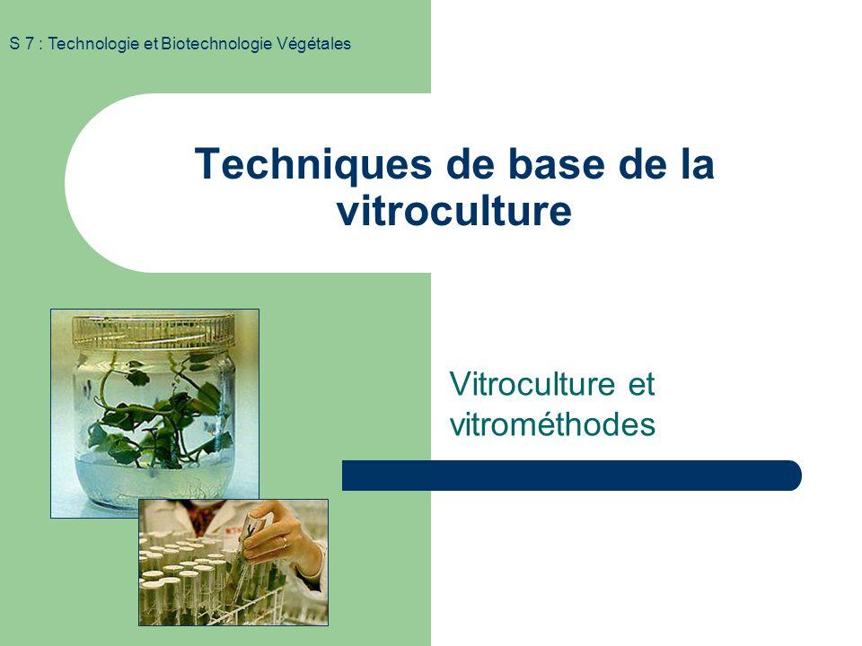 S 7 : Technologie et Biotechnologie Végétales Organogenèse et callogenèse in vitro Cellules indifférenciées Cellules différenciées (cultures dorganes)