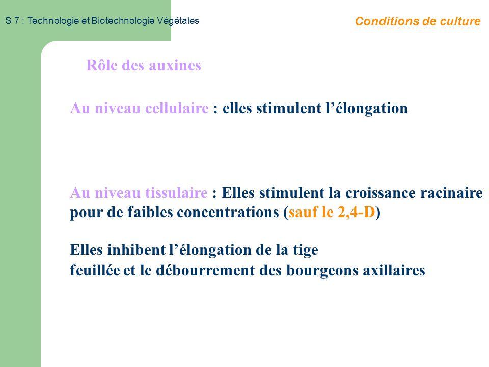 S 7 : Technologie et Biotechnologie Végétales Mode de production des auxines Site de production: bourgeon apical Diffusion des hormones - dominance ap