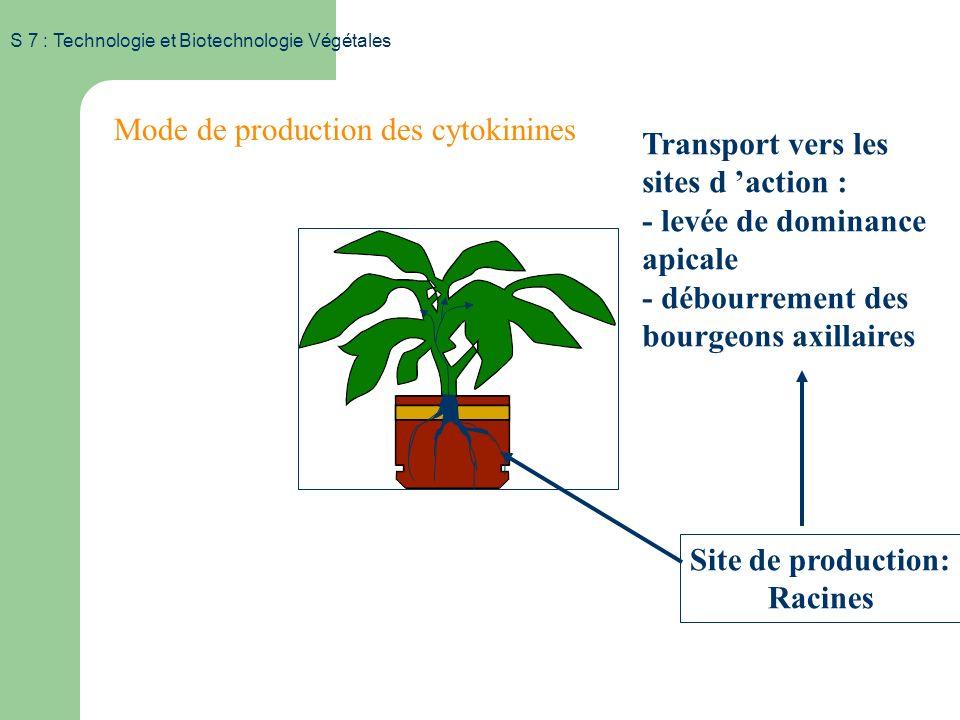 S 7 : Technologie et Biotechnologie Végétales Substances de croissance Les cytokinines – Naturelles Isoprénoïd CK (ex: zéatine) Aromatic CK (ex: BA) C