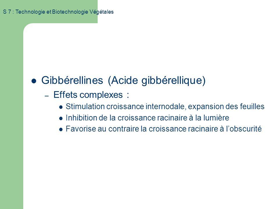 S 7 : Technologie et Biotechnologie Végétales Substances de croissance Gibbérellines (Acide gibbérellique) – Noyau ent-Kaurène (issu du geranyl-gerany