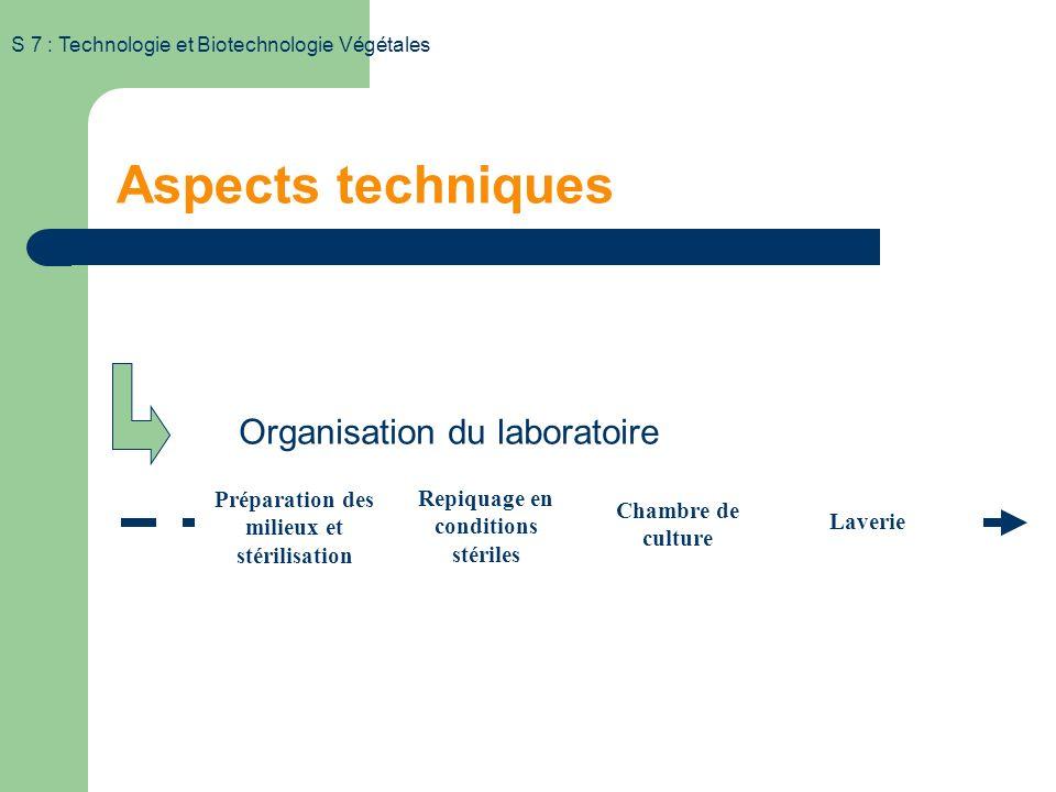 S 7 : Technologie et Biotechnologie Végétales Aspects techniques Organisation du laboratoire Préparation des milieux et stérilisation Repiquage en conditions stériles Chambre de culture Laverie