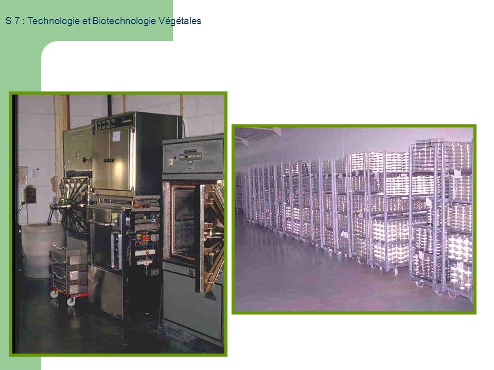 S 7 : Technologie et Biotechnologie Végétales Aspects techniques Organisation du laboratoire Préparation des milieux et stérilisation Repiquage en con