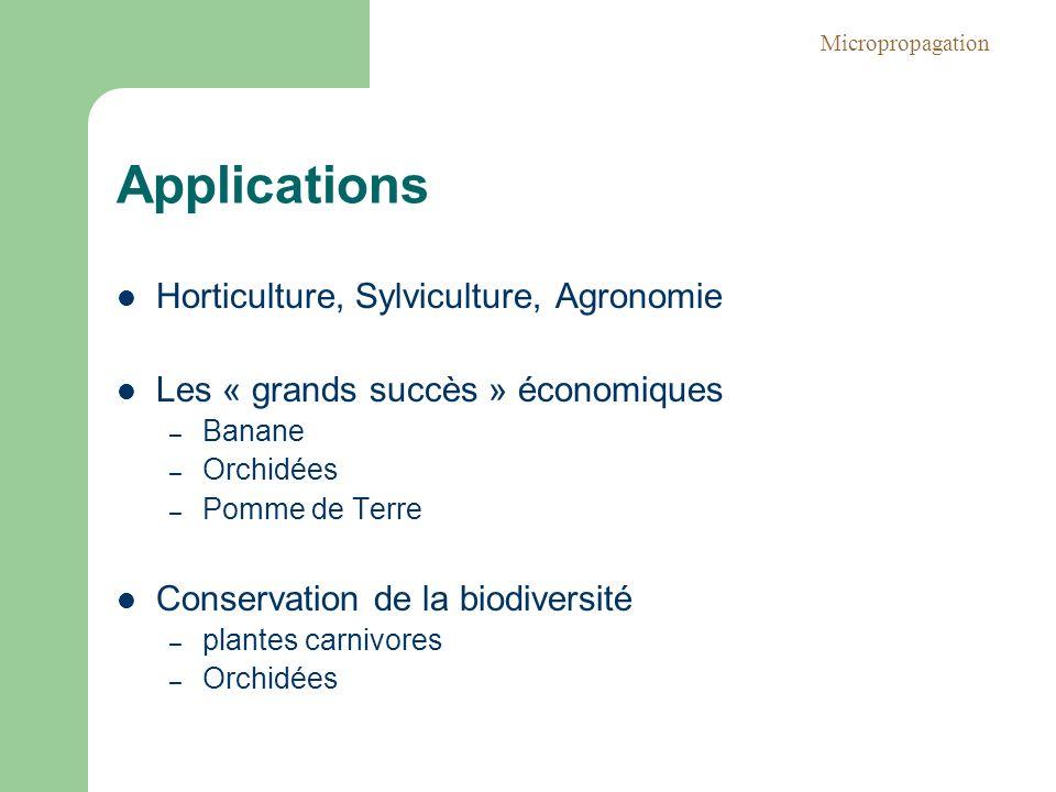 Applications Horticulture, Sylviculture, Agronomie Les « grands succès » économiques – Banane – Orchidées – Pomme de Terre Conservation de la biodiver