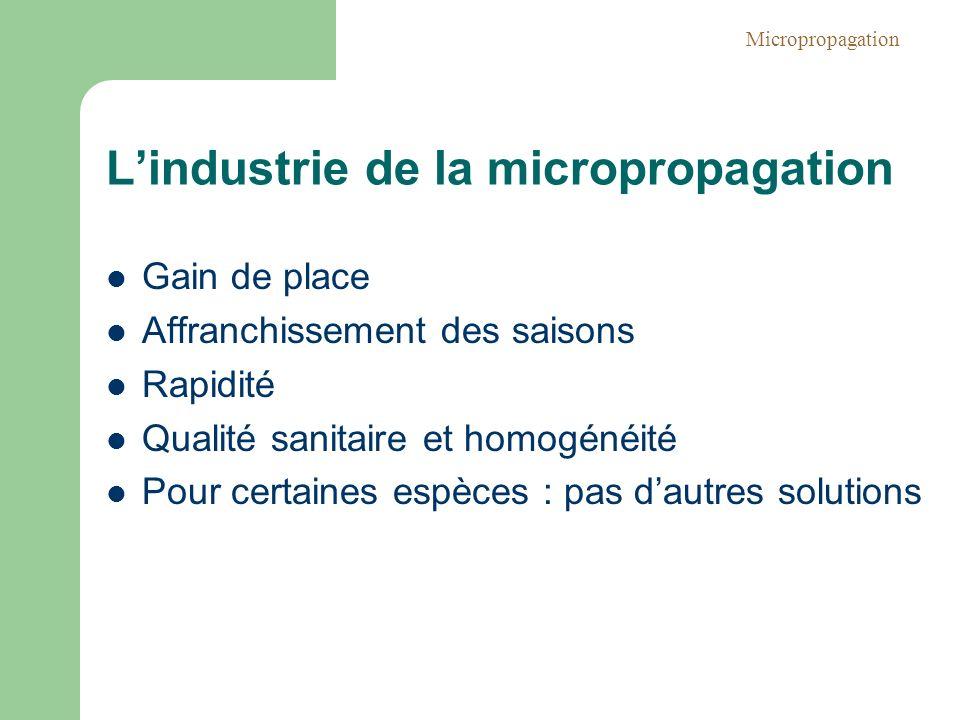 Lindustrie de la micropropagation Gain de place Affranchissement des saisons Rapidité Qualité sanitaire et homogénéité Pour certaines espèces : pas da