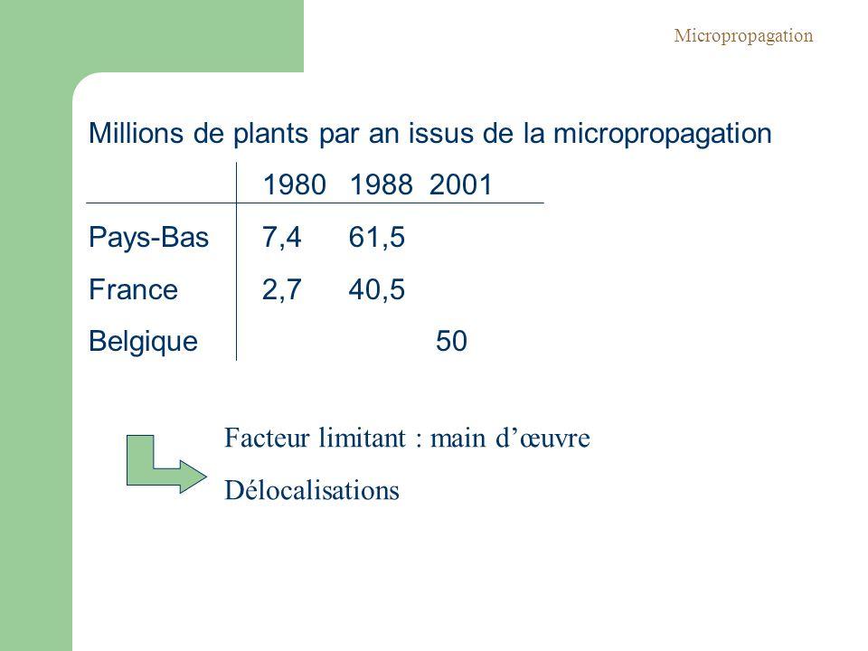 Millions de plants par an issus de la micropropagation 1980 1988 2001 Pays-Bas 7,4 61,5 France 2,740,5 Belgique50 Facteur limitant : main dœuvre Déloc