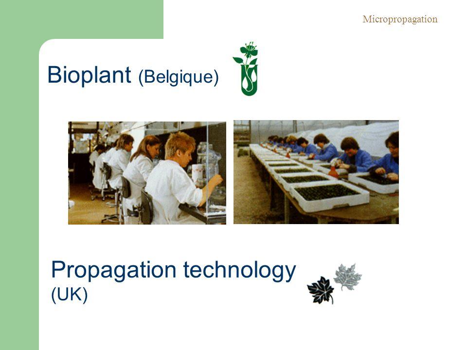 Bioplant (Belgique) Propagation technology (UK) Micropropagation