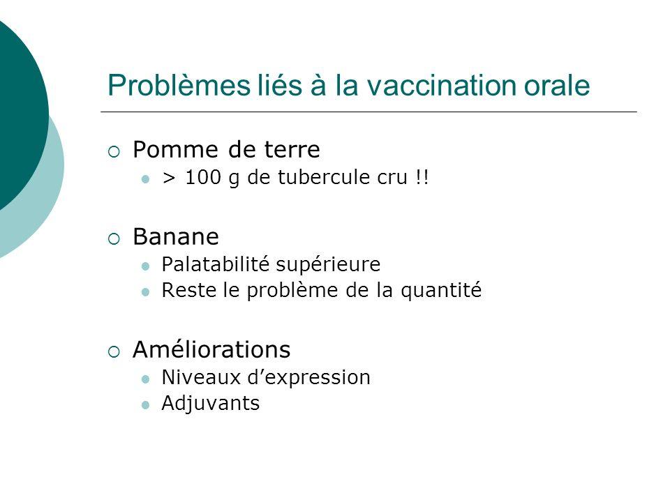 Problèmes liés à la vaccination orale Pomme de terre > 100 g de tubercule cru !! Banane Palatabilité supérieure Reste le problème de la quantité Améli