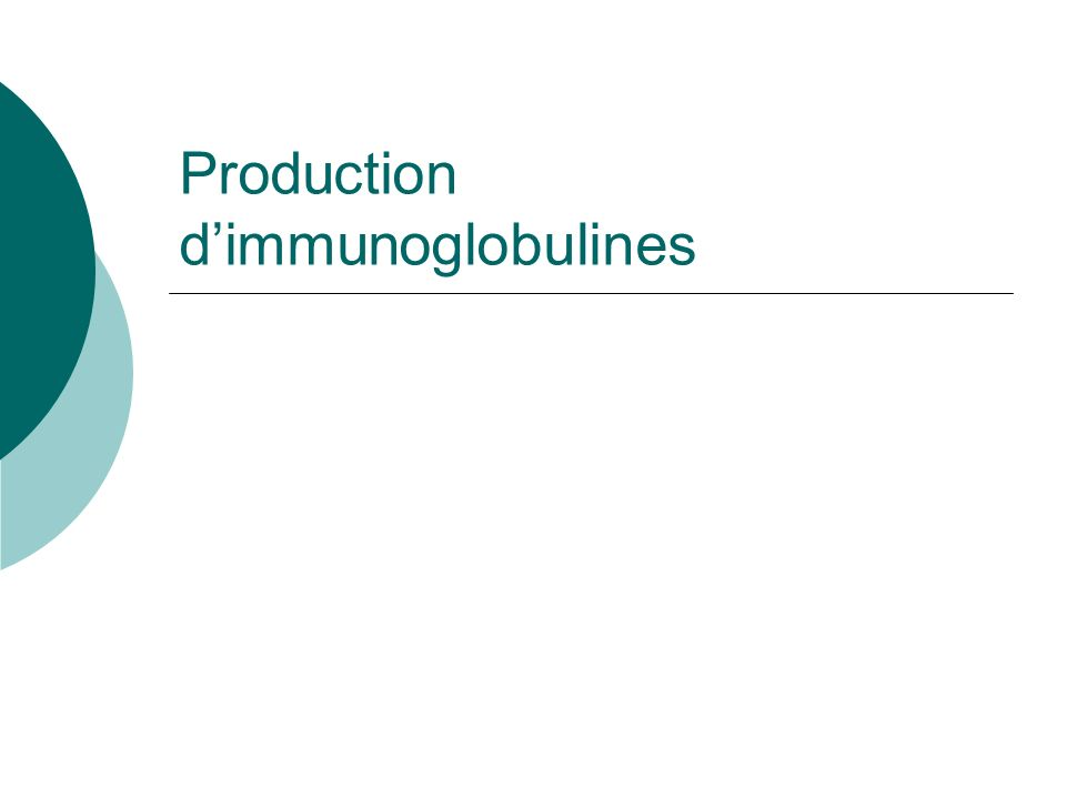 Production dimmunoglobulines