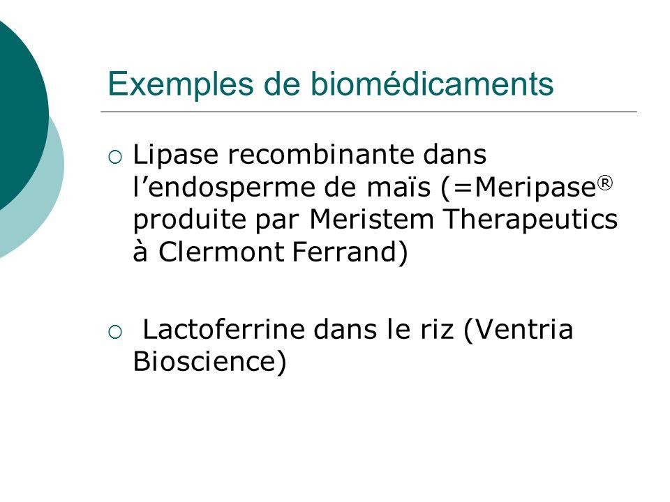 Exemples de biomédicaments Lipase recombinante dans lendosperme de maïs (=Meripase ® produite par Meristem Therapeutics à Clermont Ferrand) Lactoferri