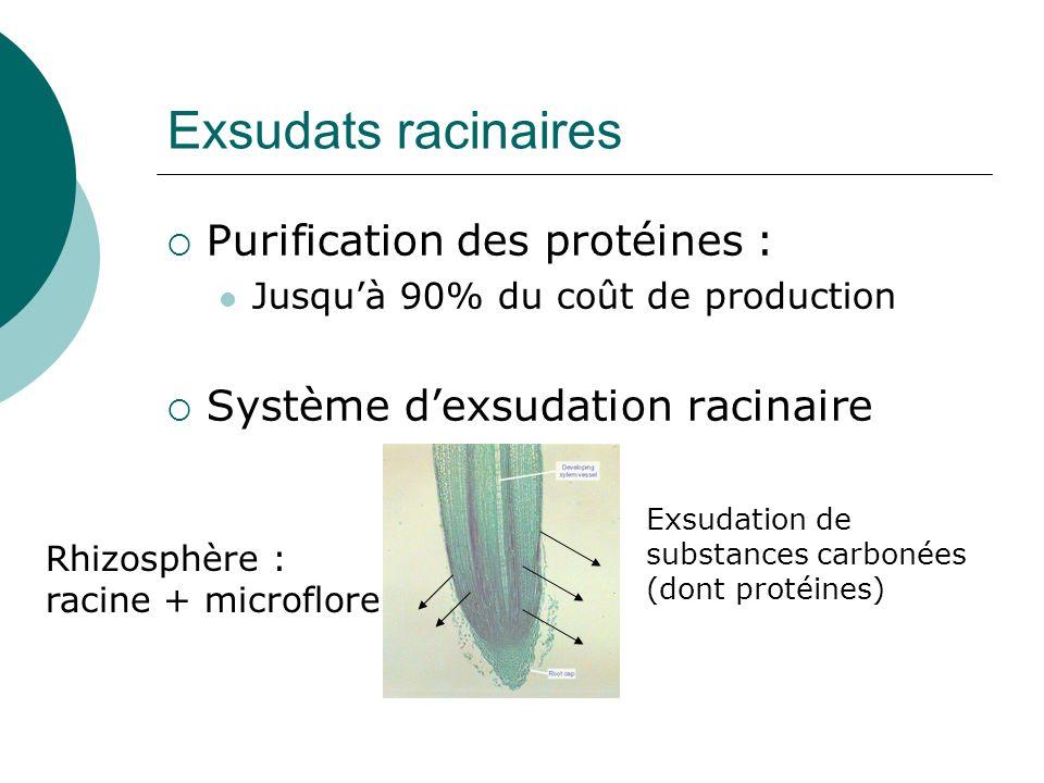 Exsudats racinaires Purification des protéines : Jusquà 90% du coût de production Système dexsudation racinaire Exsudation de substances carbonées (do