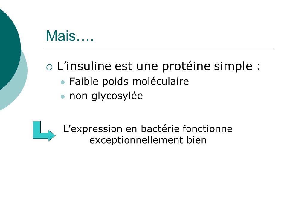 Mais…. Linsuline est une protéine simple : Faible poids moléculaire non glycosylée Lexpression en bactérie fonctionne exceptionnellement bien