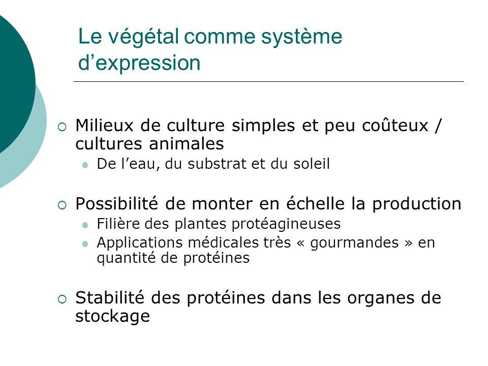 Le végétal comme système dexpression Milieux de culture simples et peu coûteux / cultures animales De leau, du substrat et du soleil Possibilité de mo