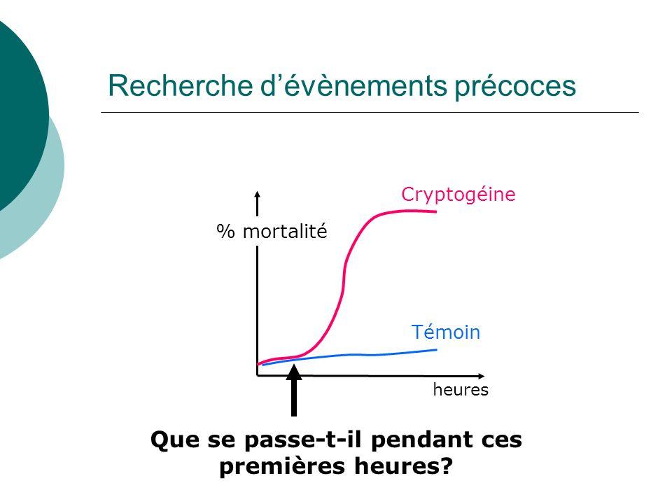 Recherche dévènements précoces Cryptogéine heures % mortalité Témoin Que se passe-t-il pendant ces premières heures?