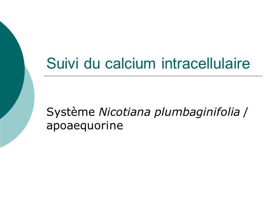 Suivi du calcium intracellulaire Système Nicotiana plumbaginifolia / apoaequorine