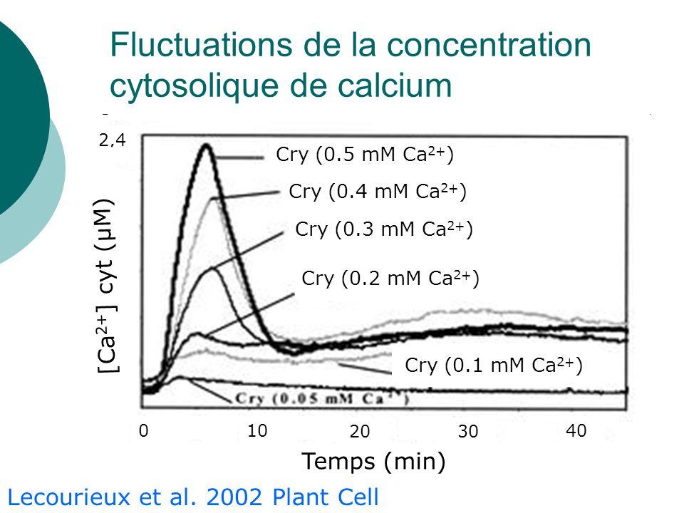 Fluctuations de la concentration cytosolique de calcium Temps (min) Cry (0.5 mM Ca 2+ ) Cry (0.4 mM Ca 2+ ) Cry (0.3 mM Ca 2+ ) Cry (0.2 mM Ca 2+ ) Cry (0.1 mM Ca 2+ ) 010 2030 40 2,4 [Ca 2+ ] cyt (µM) Lecourieux et al.