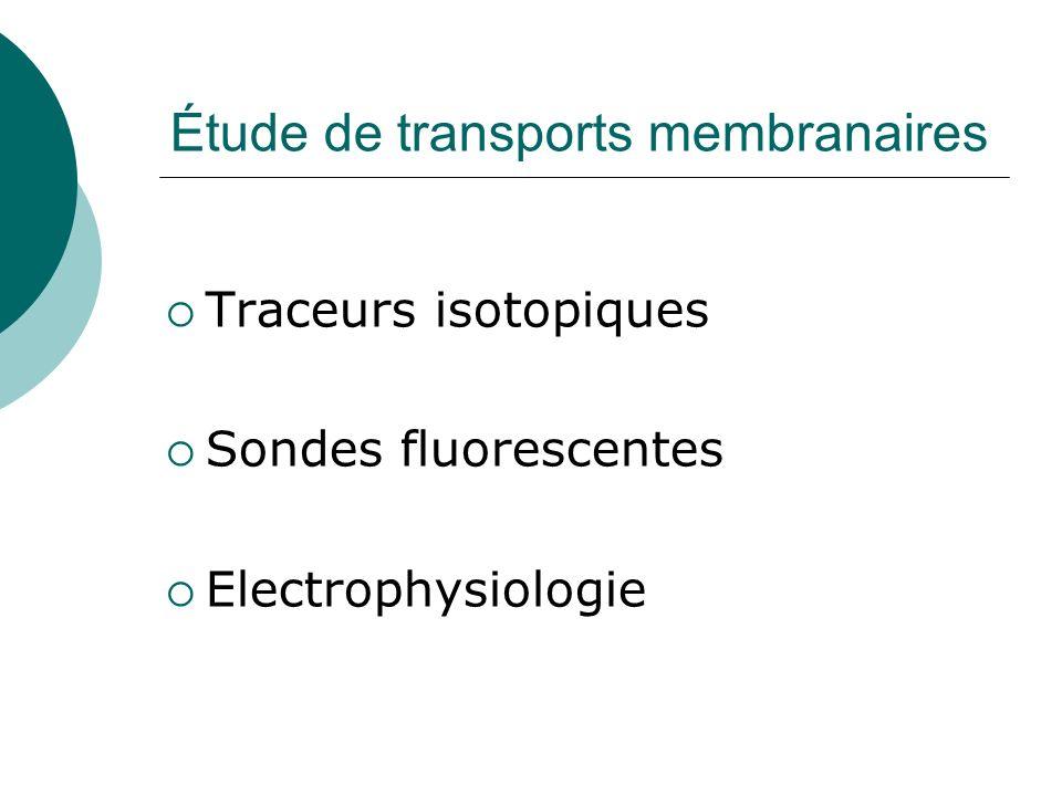 Étude de transports membranaires Traceurs isotopiques Sondes fluorescentes Electrophysiologie