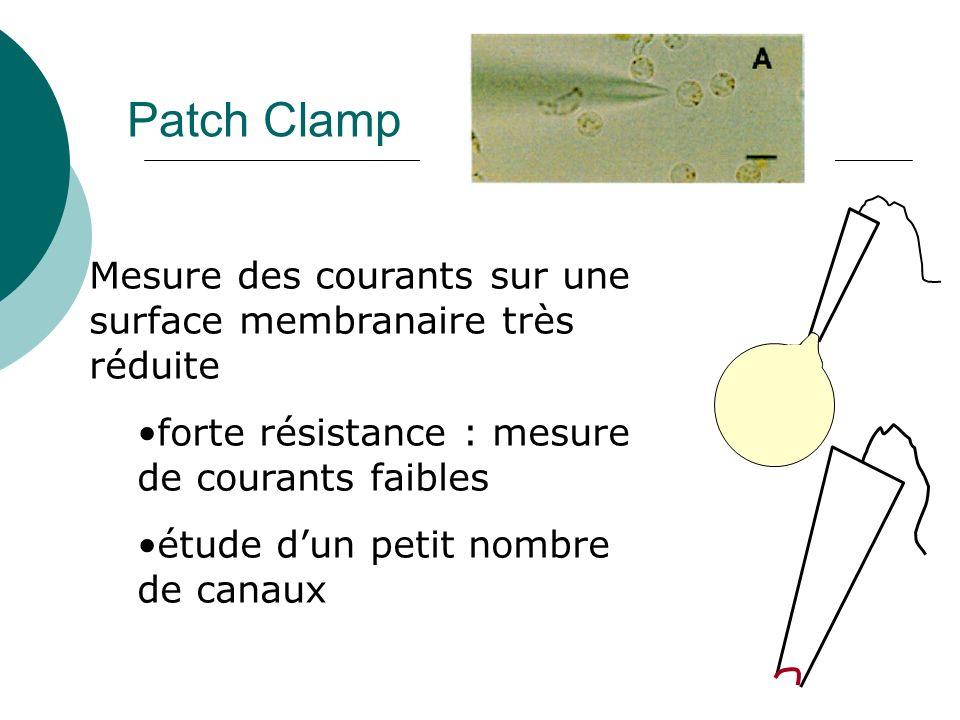 Patch Clamp Mesure des courants sur une surface membranaire très réduite forte résistance : mesure de courants faibles étude dun petit nombre de canaux
