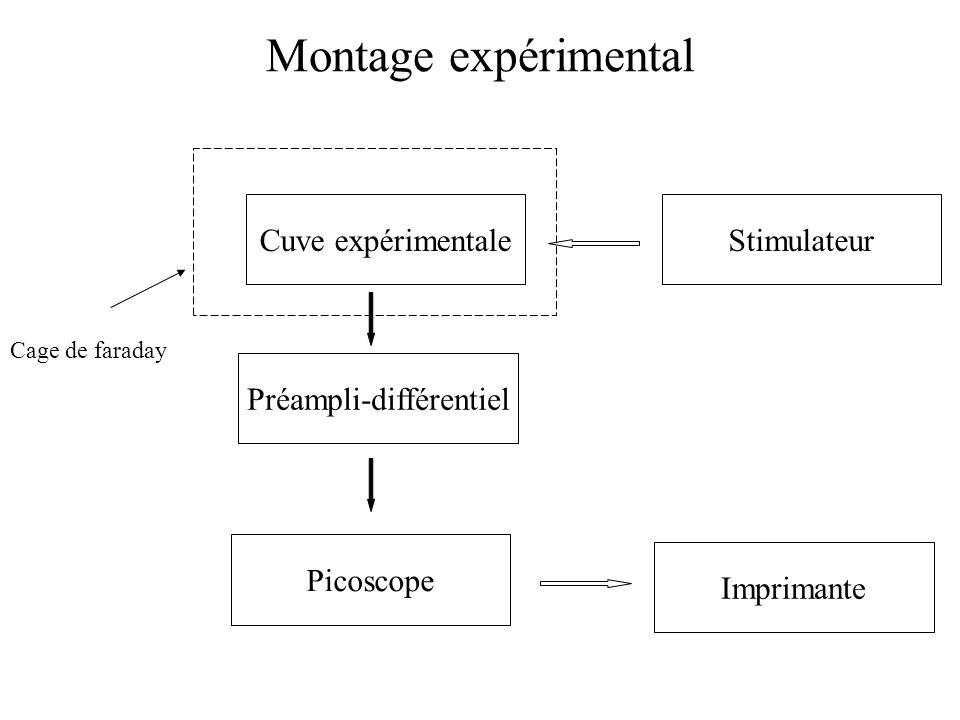 Montage expérimental Cuve expérimentale Préampli-différentiel Picoscope Stimulateur Cage de faraday Imprimante
