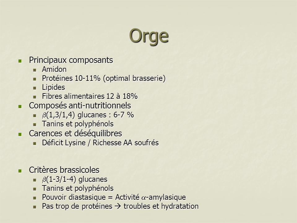 Avoine Principaux composants Principaux composants Amidon Amidon Protéines 11% (80% de globuline) : hydrosolubles et équilibrées en AA Protéines 11% (80% de globuline) : hydrosolubles et équilibrées en AA Lipides 5% Lipides 5% Cellulose 12% Cellulose 12% Composés anti-nutritionnels Composés anti-nutritionnels beta (1,3/1,4) glucanes : 5-20 % beta (1,3/1,4) glucanes : 5-20 % Carences, points forts Carences, points forts Equilibre relatif en AA Equilibre relatif en AA Gros déséquilibre phosphocalcique très impactant sur le porc et le cheval ostéoporose Gros déséquilibre phosphocalcique très impactant sur le porc et le cheval ostéoporose