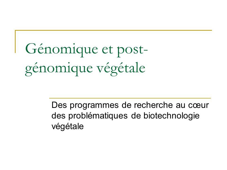 Génomique et post- génomique végétale Des programmes de recherche au cœur des problématiques de biotechnologie végétale