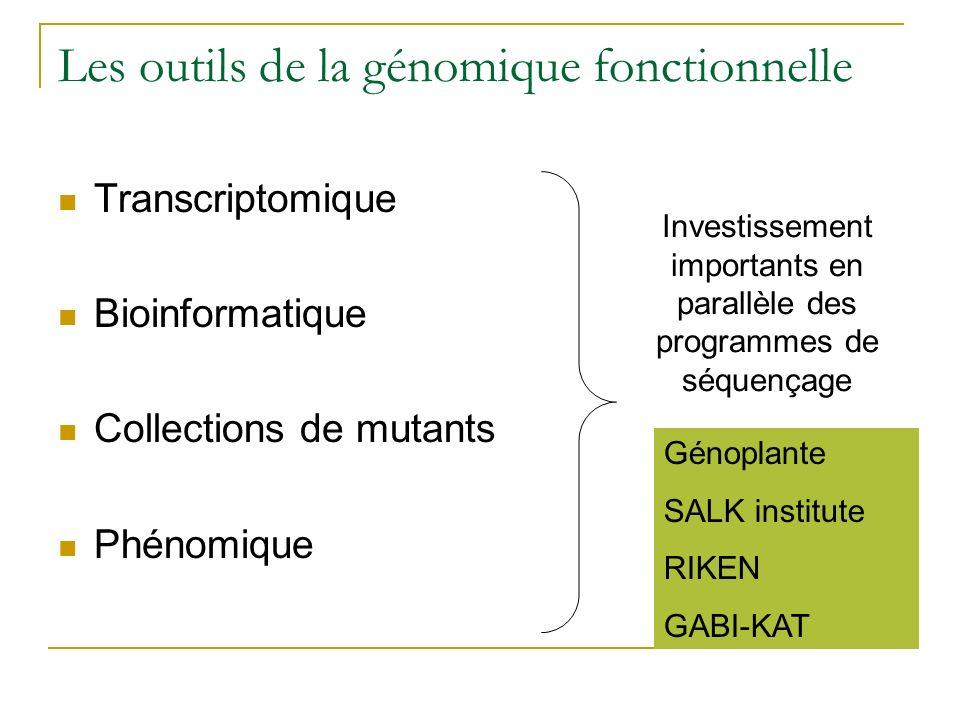Les outils de la génomique fonctionnelle Transcriptomique Bioinformatique Collections de mutants Phénomique Investissement importants en parallèle des programmes de séquençage Génoplante SALK institute RIKEN GABI-KAT