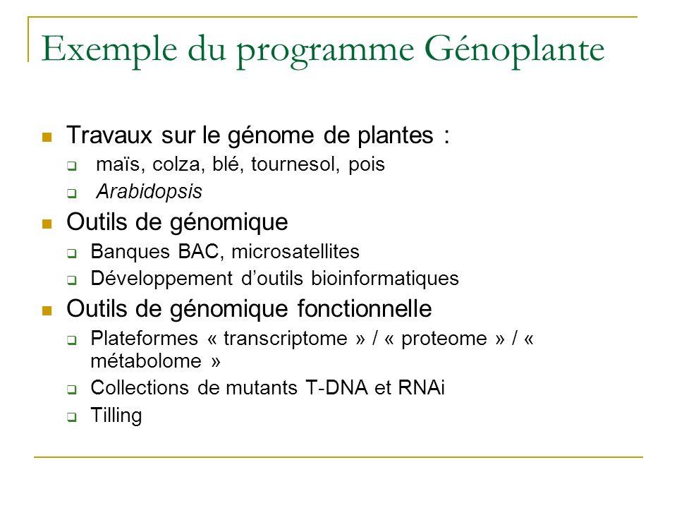Exemple du programme Génoplante Travaux sur le génome de plantes : maïs, colza, blé, tournesol, pois Arabidopsis Outils de génomique Banques BAC, microsatellites Développement doutils bioinformatiques Outils de génomique fonctionnelle Plateformes « transcriptome » / « proteome » / « métabolome » Collections de mutants T-DNA et RNAi Tilling