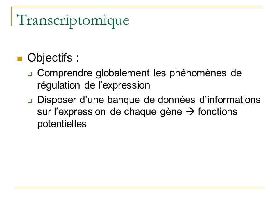 Transcriptomique Objectifs : Comprendre globalement les phénomènes de régulation de lexpression Disposer dune banque de données dinformations sur lexpression de chaque gène fonctions potentielles