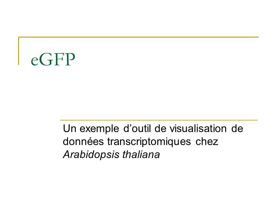 eGFP Un exemple doutil de visualisation de données transcriptomiques chez Arabidopsis thaliana