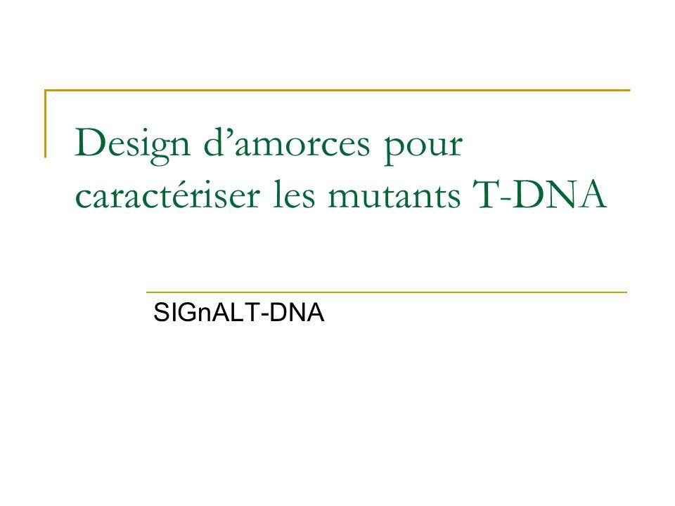 Design damorces pour caractériser les mutants T-DNA SIGnALT-DNA