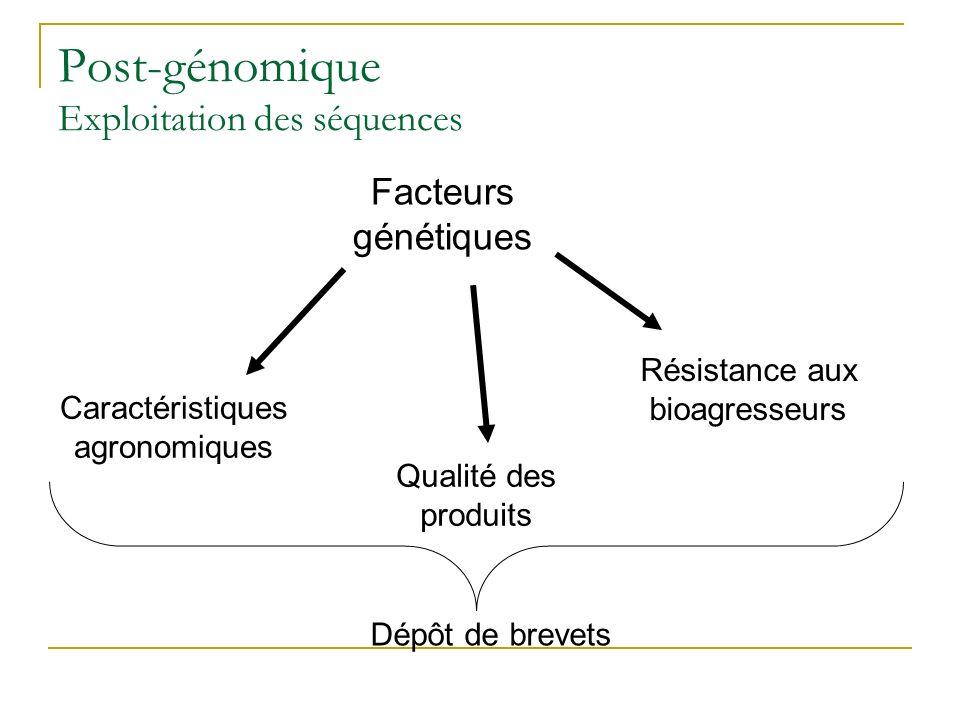 Post-génomique Exploitation des séquences Caractéristiques agronomiques Qualité des produits Résistance aux bioagresseurs Facteurs génétiques Dépôt de brevets