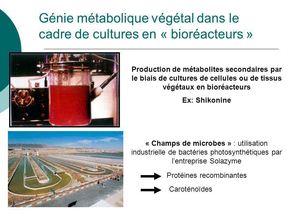 Génie métabolique Optimisation des procédés de fermentation industrielle basée sur la compréhension et la modulation de voies métaboliques Conditions de culture Génie génétique Définition valable pour seulement pour des aspects très restreints du génie métabolique chez les végétaux