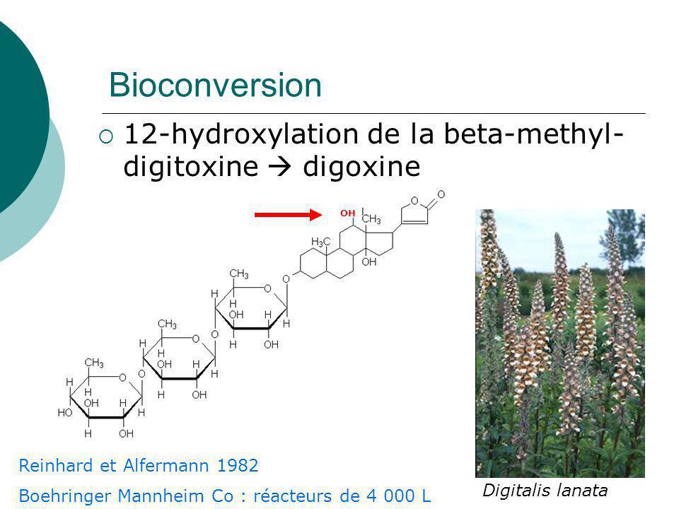 Ajout de précurseurs dans le milieu de culture : bioconversion Amélioration ABC A C coût B / coût C .