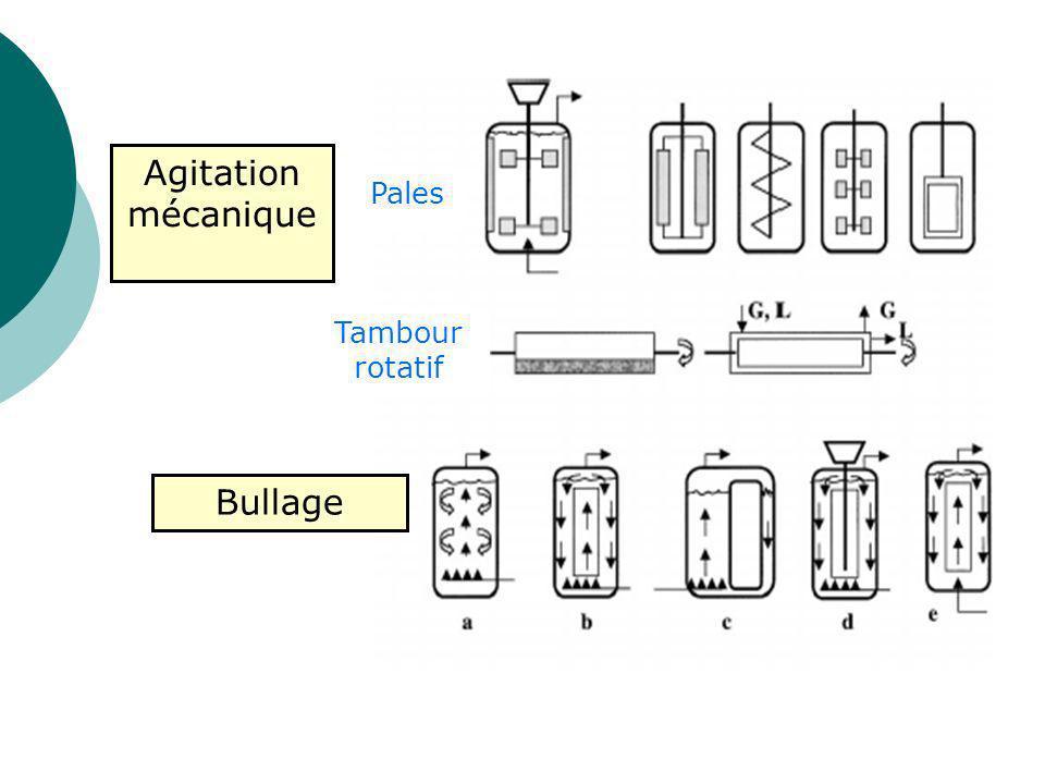 Les freins du « scale up » Transferts de masse gaz-liquide (oxygène) Sensibilité au cisaillement ( 100 t/min) Homogénéisation du milieu : Sédimentation Attachement Contact cellules-liquide Production in vitro