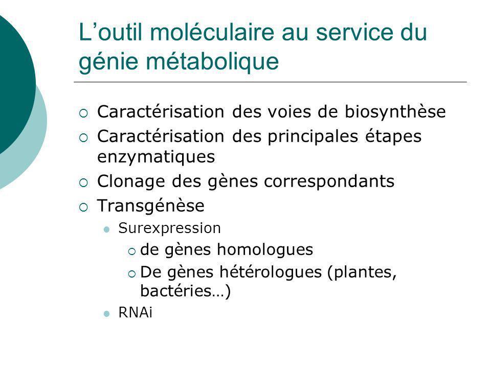Génie génétique et génie métabolique Stratégies moléculaires pour manipuler des voies de biosynthèse
