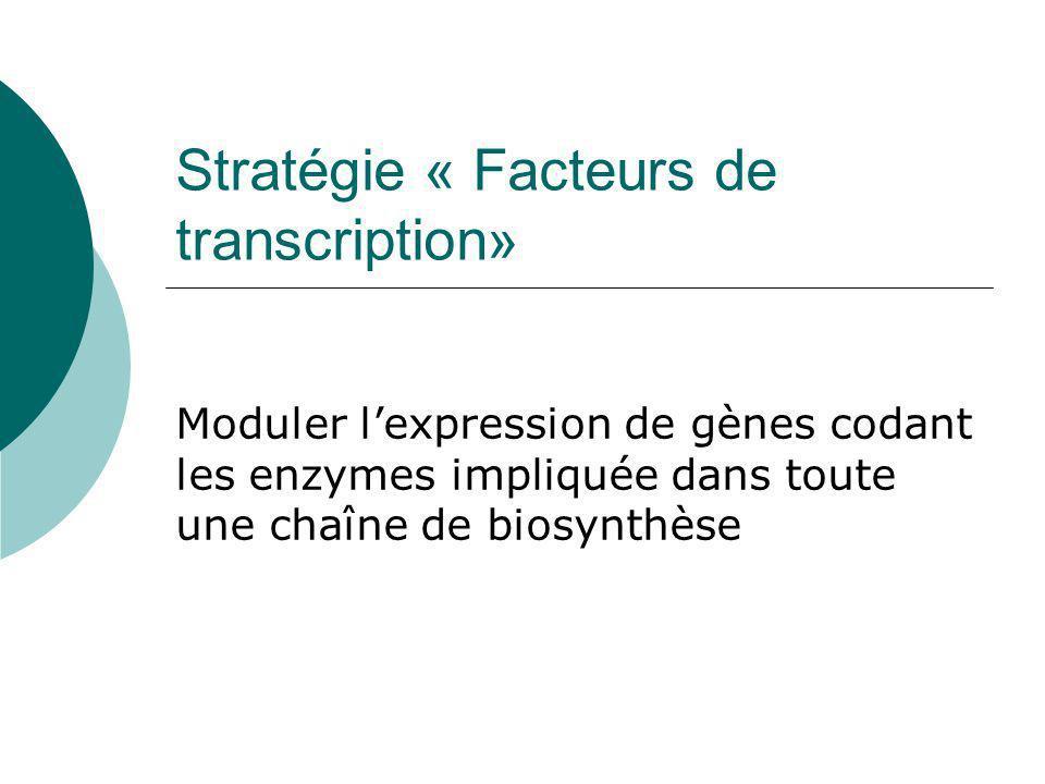 Surexpression de la hyoscyamine 6- hydroxylase (H6H) et de la putrescine methyl-esterase (PMT) Témoin racines transformées par A.