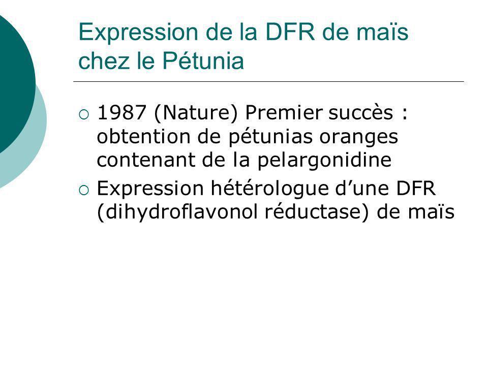 CHS F3HF35H DFR