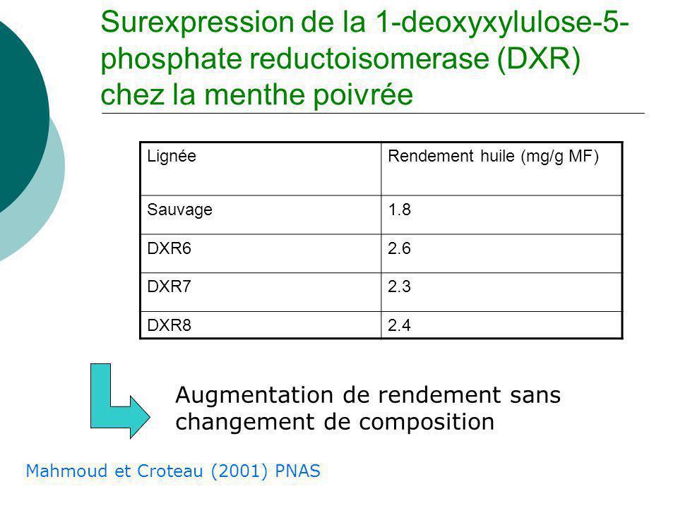 2 x acétyl CoA Mévalonate Mévalonate 5- diphosphate DXPS DXR MCT CMK MECPS 2-C-Méthyl-D- erythritol-2,4- cyclodiphosphate Isopentényl diphosphate Diméthylallyl diphosphate IPPI MDC Pyruvate + G3P Terpenoïdes Cytosol Plaste Goulot détranglement ?