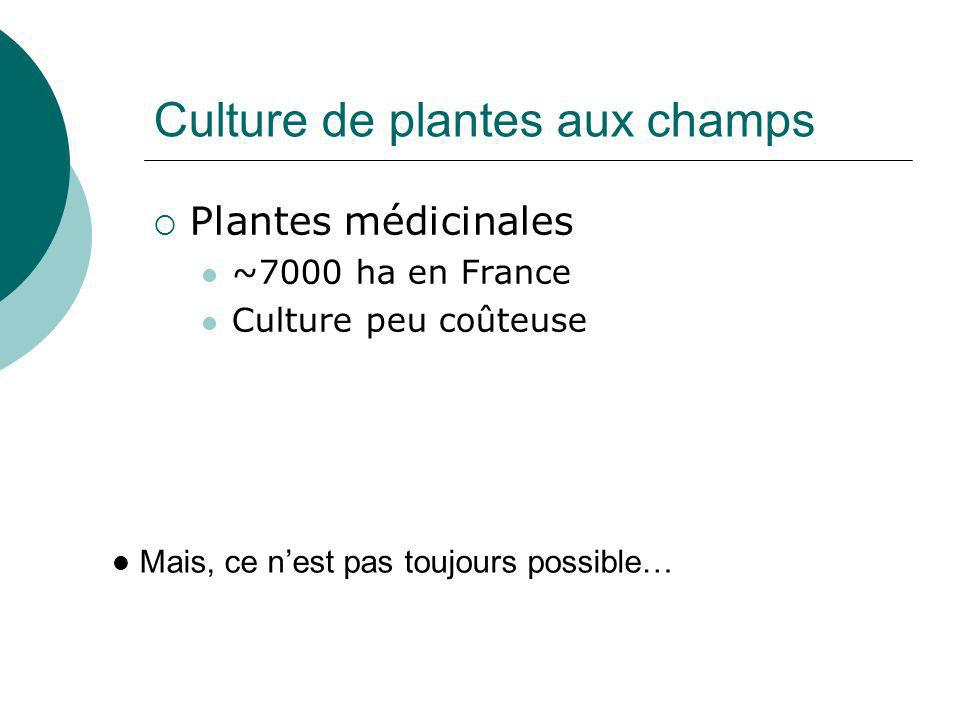 Synthèse organique : les plantes comme modèle Souvent possible, à bas prix Ex : aspirine Mais, ce nest pas toujours possible… Réaction de Kolbe