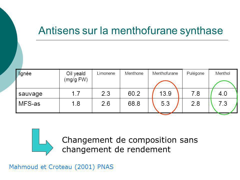 Biosynthèse du menthol Mahmoud et Croteau (2001) PNAS Cytochromes P450 (Réticulum) LeucoplastesMitochondrie