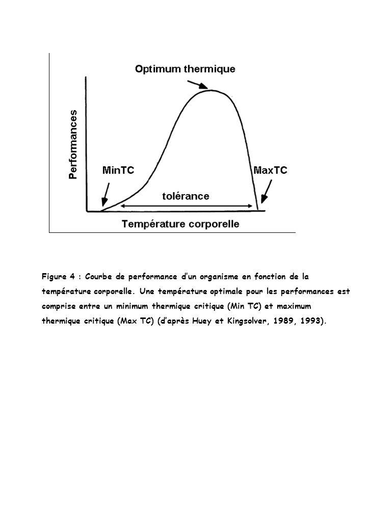 Figure 4 : Courbe de performance dun organisme en fonction de la température corporelle. Une température optimale pour les performances est comprise e