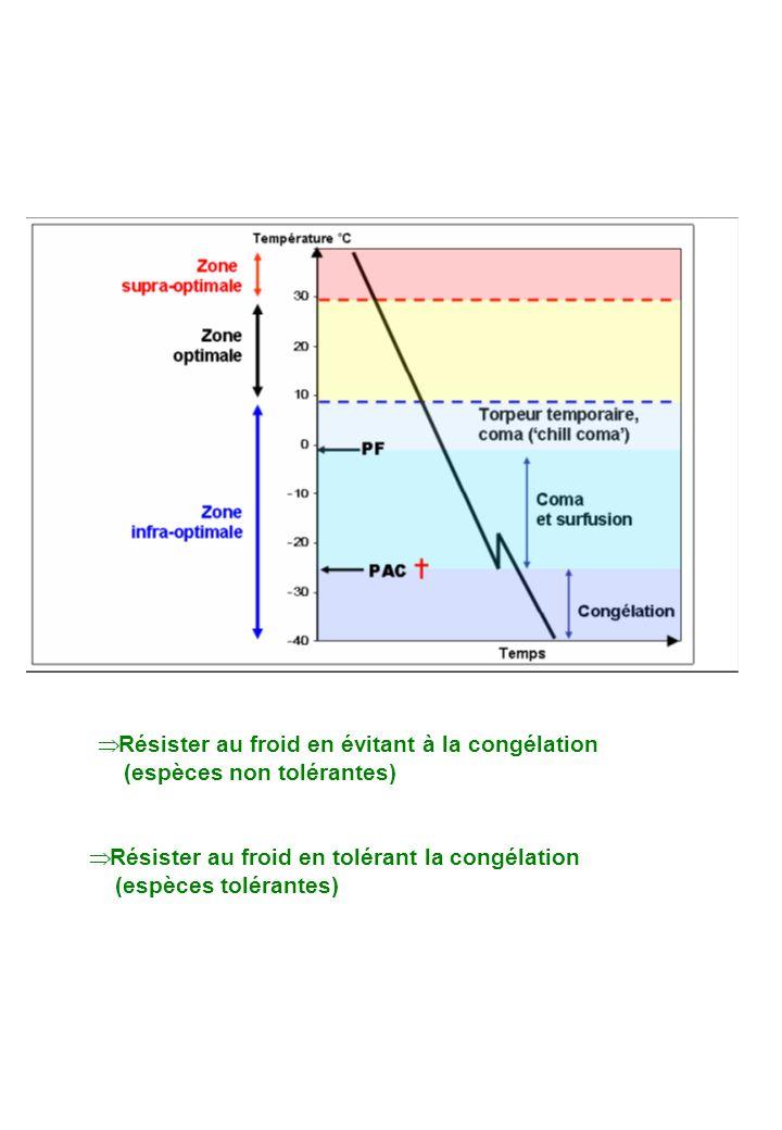 Résister au froid en évitant à la congélation (espèces non tolérantes) Résister au froid en tolérant la congélation (espèces tolérantes)