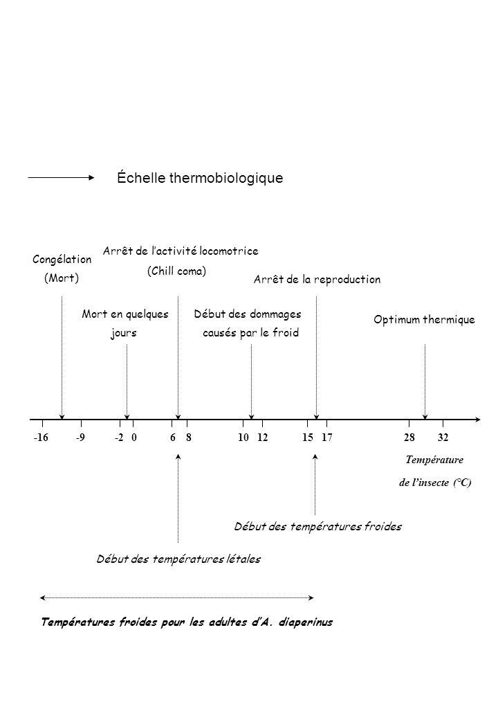 Température Optimum thermique Arrêt de la reproduction 151728321012 Début des dommages causés par le froid 68 de linsecte (°C) Arrêt de lactivité loco