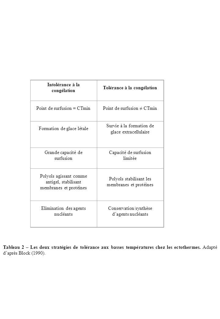 Intolérance à la congélation Tolérance à la congélation Point de surfusion = CTminPoint de surfusion CTmin Formation de glace létale Survie à la forma